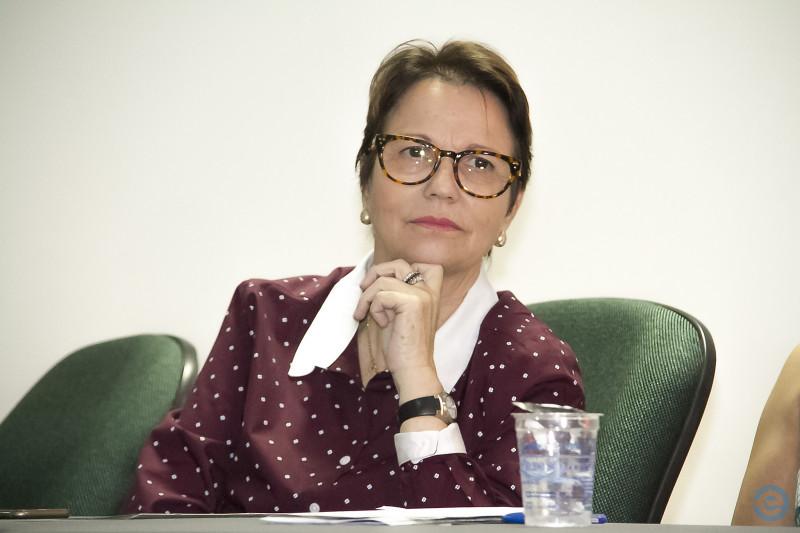 Resultado de imagem para deputada federal Tereza Cristina (DEM-MS)